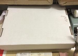 Record Storage Box Lid Shielding Smaller Items