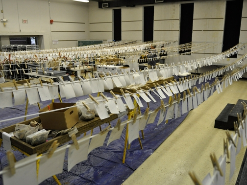 Figure 6. Approximately 3,000 photographs were hung to dry each day for one week. Image Credit: Glenn Gardner/SCDNR.