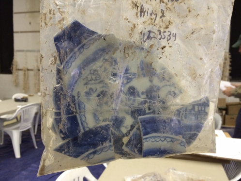 Figure 7. Willow Ware plate with floodwater in bag. Image Credit: Meg Gaillard/SCDNR.